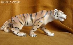 Tigris csökkentett áron!