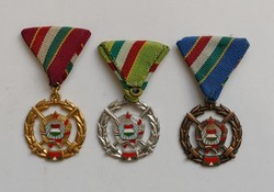 Fegyverbarátságért Érdemérem arany, ezüst, bronz fokozat. ( 1979 )