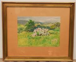 Veress Zoltán (1968-1935) Budapest Nyék Hűvösvölgy antik festménye eredeti garanciával !!!!