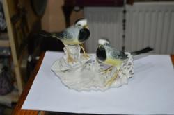 Páros ENS madár