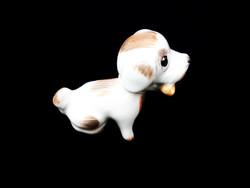 Ritka Aquincumi csontos bólogató kutya