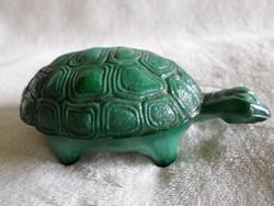 Malachit zöld teknős, teknősbéka