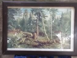 Siskin Orosz erdő nagyméretű reprodukció-falikép-dekoráció  ü.alatt,fakeret