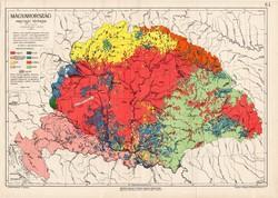 Magyarország néprajzi térkép 1907, eredeti, atlasz, Kogutowicz Manó, régi, magyar, Cholnoky Jenő