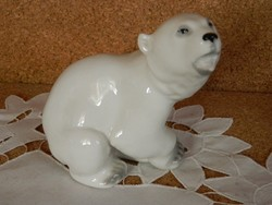 Lomonosov jegesmedve.