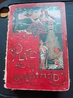 Platen Az új gyógymód -II. (1900)