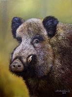 LEÁRAZVA Vadkan portré 40x30cm olaj-vászon festmény