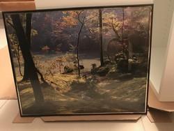 Falikép természet fotóval, 50 x 40 cm, Új!