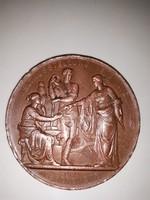 Ferenc József bronz emlékérem-1873