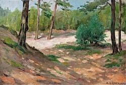 """A. G. Grotegoed  (1903-1938) """" Liget 1930 """""""