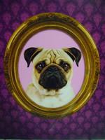 Mopsz kutya portré fakeretre  feszítve