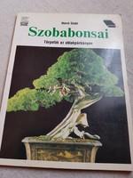 Szobabonsai-Horst Stahl