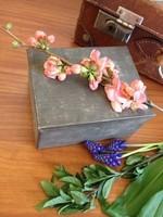 Antik fém pléh dobozka