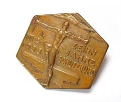 3.Birodalom, 10 éves a Schutzbund, 1933 május 1. jelvény.