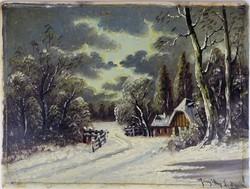 0W492 Margittay G. J. : Erdei lak télen