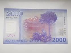 Chile 2000 pesos 2013 UNC  Polymer