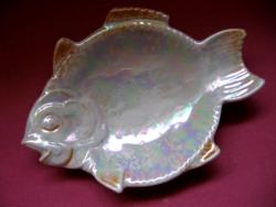 Eozinos kis hal formájú PM tálka