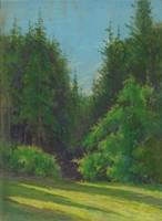 0V611 Némethy Nándor : Erdőbelső