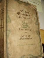 Arthur Schnitzler: Doktor Gräsler Badearzt - német nyelvű, gót betűs, 1917
