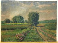 Mészáros József /1925 - 1979/ : Szombathely környéki táj,1958