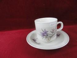 Kínai porcelán bögre + alátét, lila virágos.