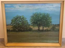 Turcsán Miklós: Táj című képcsarnokos festménye