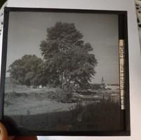 Üveg fotó negatív 1904