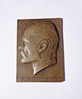 Beck Ö. Fülöp.: Gróf Tisza István 1907, plakett, br., 70,5x54 mm.