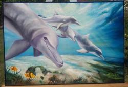 Úszkáló delfinek