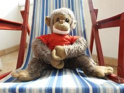 Nagyméretű öreg majom : Charley a csimpánz