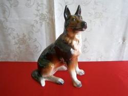 Gyönyörű, nagy méretű német juhász / németjuhász kutya Iris Cluj porcelán