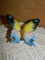 Volkstedt pillangó.