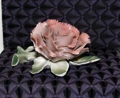 Gyönyörű ENS porcelán virág