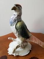 Gyönyörű német Ens nagyméretű színes porcelán madár