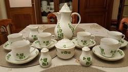 17 részes,gyönyörű, vitrinállapotú Pirkenhammer teás/kávéskészlet!