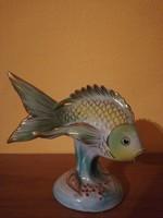 Holloházi hal
