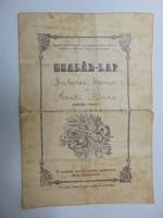 Családi - lap 1919
