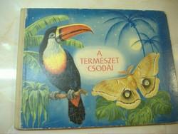 A TERMÉSZET  CSODÁI   Képeskönyv    Írta és rajzolta: Rudolf Engel Hardt