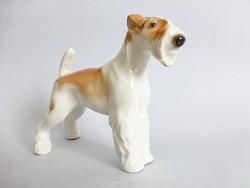 Ritka Lomonosov kutya,terrier,porcelán kutya