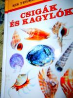 Csigák és kagylók Kis természetkalauz  sorozatból