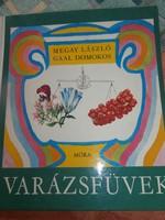 Varázsfüvek- Gyógynövénykönyv gyerekeknek