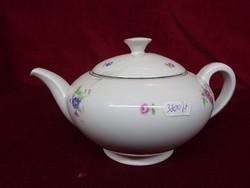 Antik cseh porcelán teáskanna, vitrinben tartott, apró virágmintás.