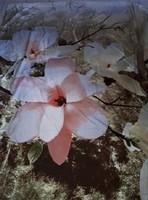 Meseszép különleges vintage stílusú virágos dupla paplanhuzat, vagy bélelhető ágyterítő
