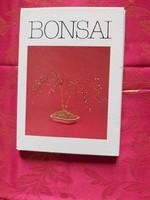 Bíró Tamás : Bonsai