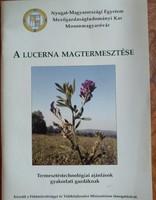 A lucerna magtermesztése, alkudható!