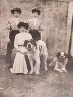 Antik Cabinet fotó Peitsik Károly műterméből, 1909.