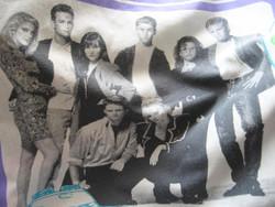 Retro Beverly hills 90210 paplan huzat