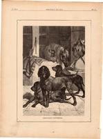 Barátságos egyetértés, fametszet 1881, metszet, nyomat, 18 x 25 cm, Ország - Világ, kutya, ló