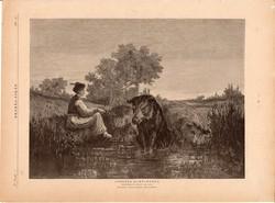 Csöndes elmélkedés, fametszet 1881, metszet, nyomat, 23 x 31 cm, Ország - Világ, újság, vaddisznó