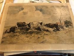 Pihenő ökrök, tusrajz, 35 x 55 cm nagyságú, gyűjtőknek.